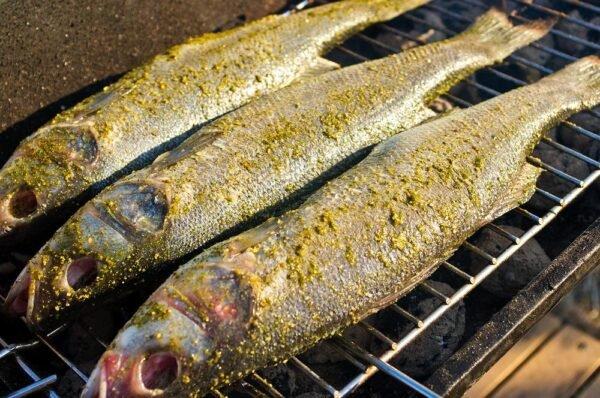 ryba na grile