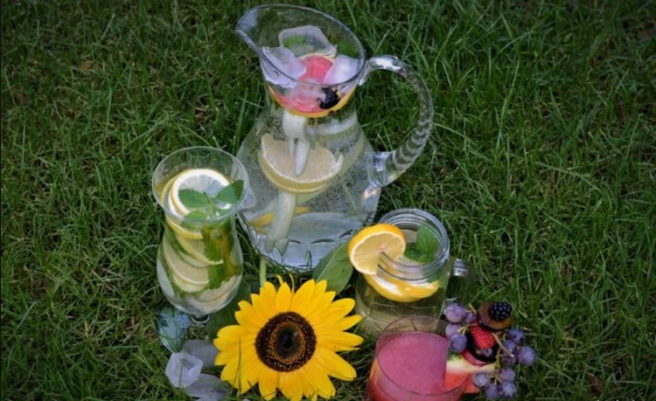 domashnie limonady